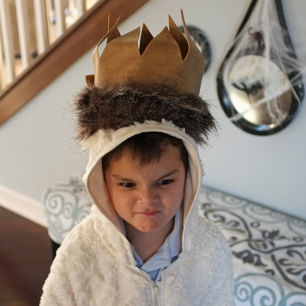 Where The Wild Things Are Max Costume