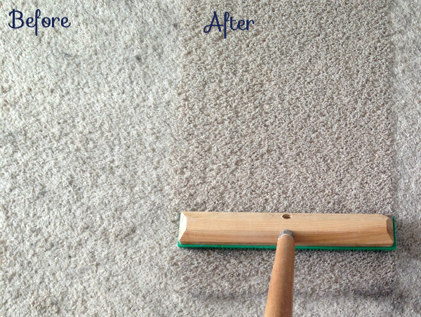 How to remove more dog hair and make your carpet look new again | tealandlime.com