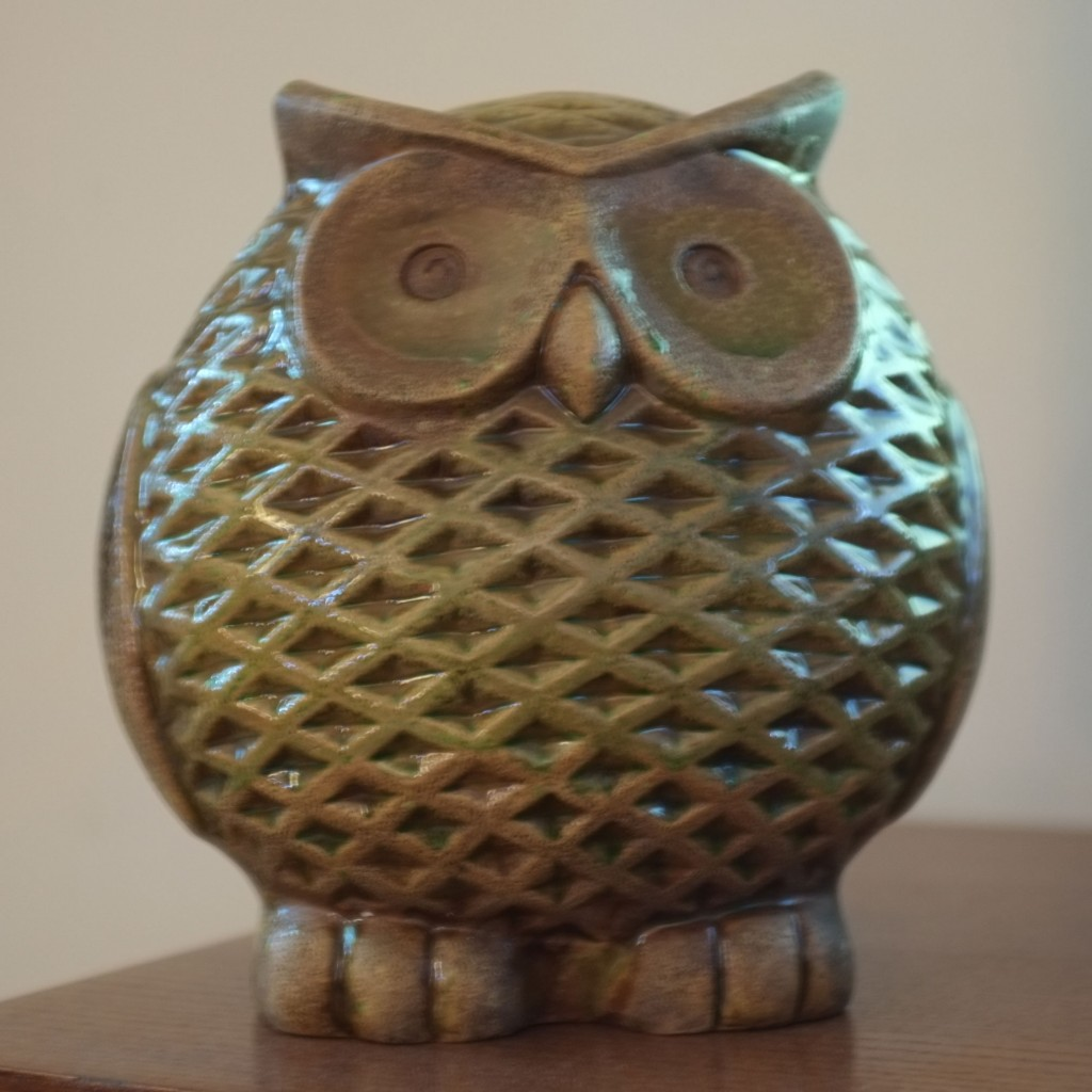 Owl Before