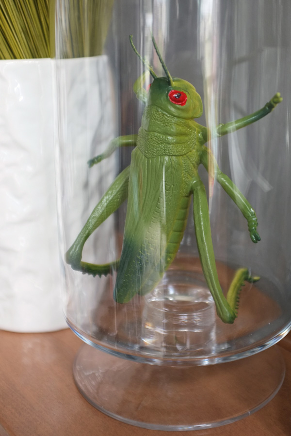 Faux Grasshopper in a Jar