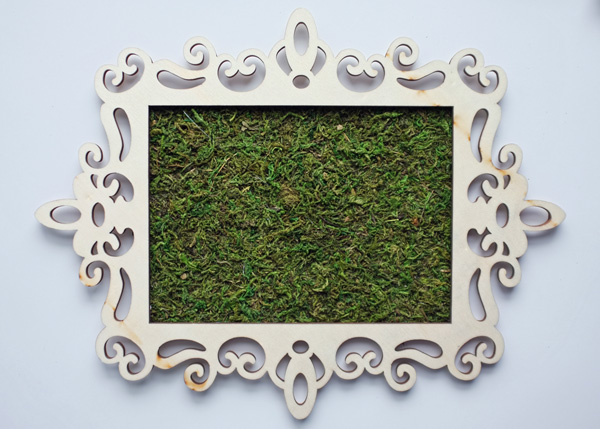 Framed Moss Tutorial